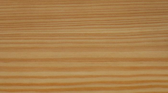 лиственница сибирская